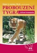 Probouzen� tygra