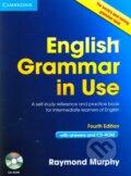 English Grammar in Use (Fourth Edition) + CD-ROM