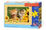 Two Kittens with Sunflowers