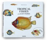Samuel Fallours: Tropical Fishes of the East Indies - Theodore W. Pietsch